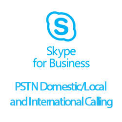 Skype for Business PSTN Domestic/Local and International Calling (3/th)